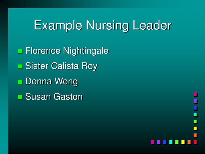 Example Nursing Leader