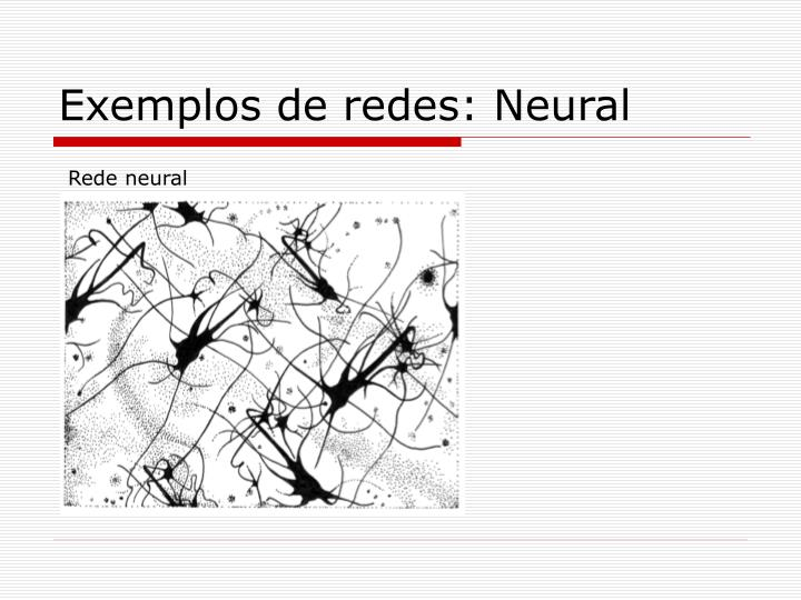 Exemplos de redes: Neural