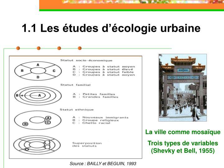 1.1 Les études d'écologie urbaine