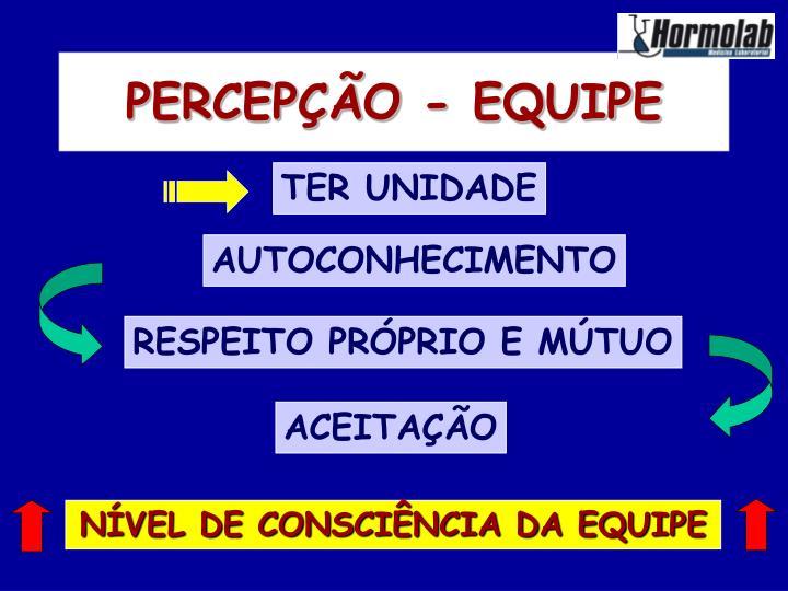 PERCEPÇÃO - EQUIPE
