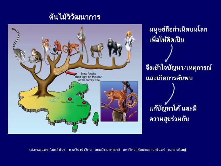 ต้นไม้วิวัฒนาการ