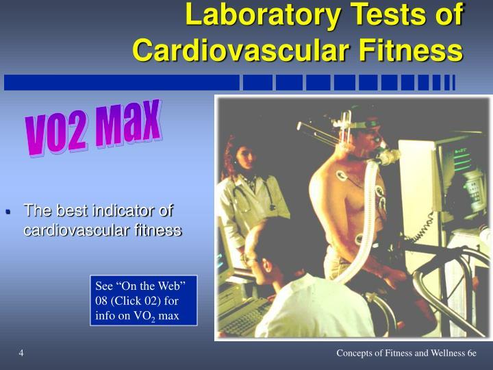 Laboratory Tests of