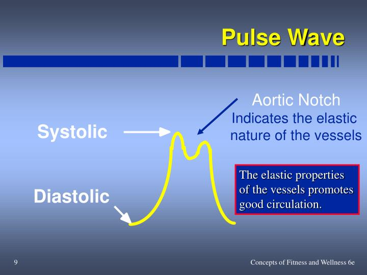 Pulse Wave