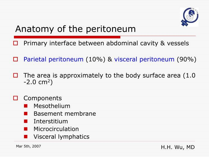 Anatomy of the peritoneum