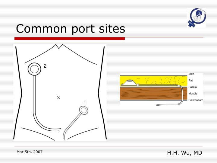 Common port sites