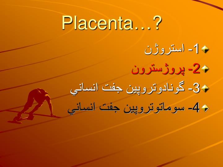 Placenta…?
