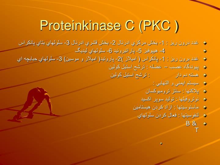 Proteinkinase C (PKC )
