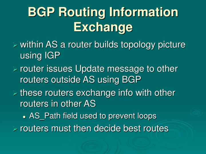 BGP Routing Information Exchange