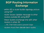bgp routing information exchange
