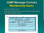 igmp message formats membership query