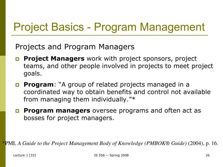 Project Basics - Program Management