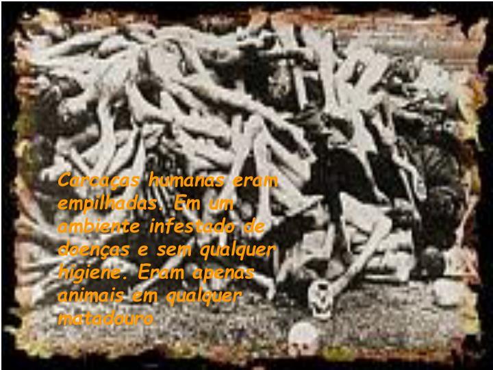 Carcaças humanas eram empilhadas. Em um ambiente infestado de doenças e sem qualquer higiene. Eram apenas animais em qualquer matadouro