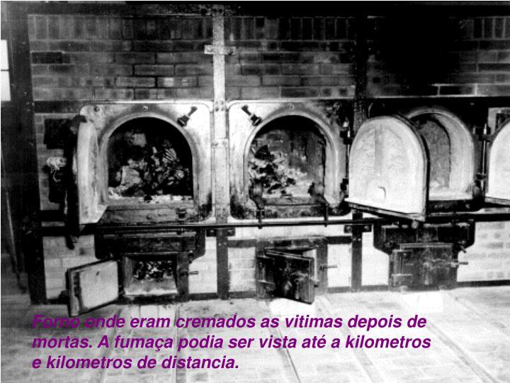 Forno onde eram cremados as vitimas depois de mortas. A fumaça podia ser vista até a kilometros e kilometros de distancia.