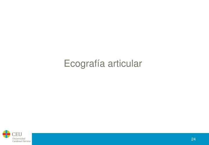 Ecografía articular