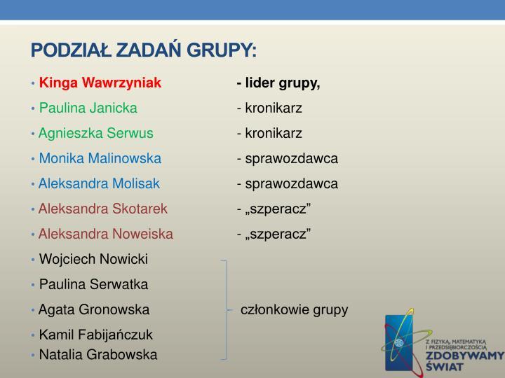 Podział zadań grupy: