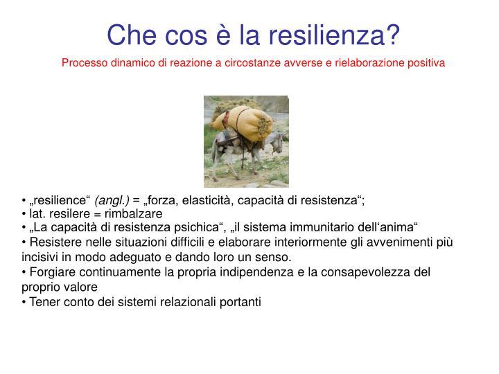 Che cos è la resilienza?