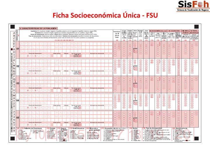 Ficha Socioeconómica Única - FSU