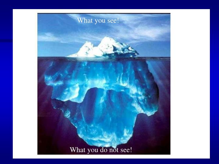 What you see!