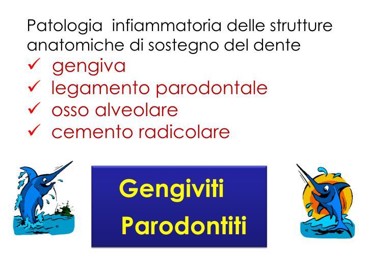 Patologia  infiammatoria delle strutture