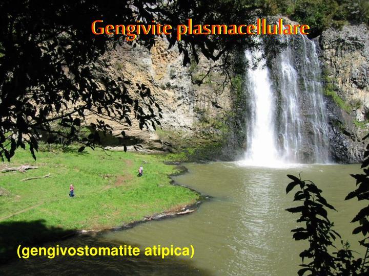 Gengivite plasmacellulare