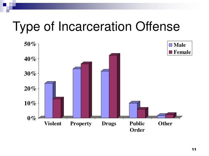 Type of Incarceration Offense
