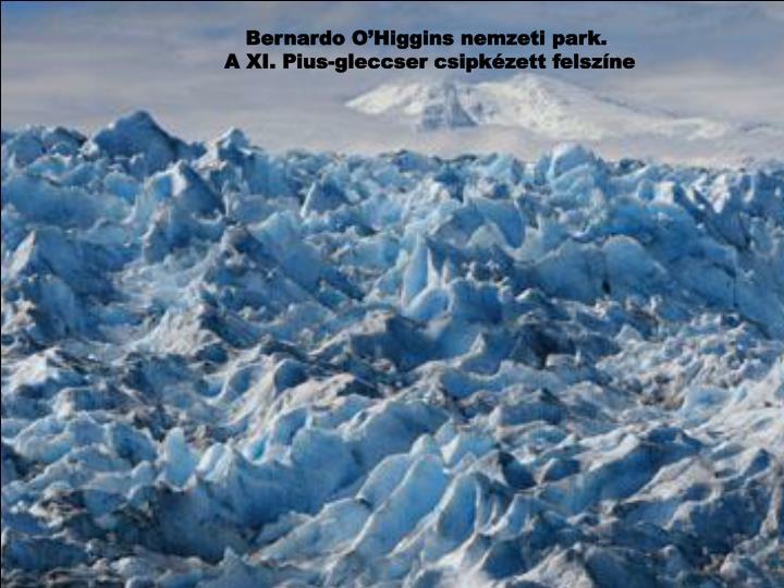 Bernardo O'Higgins nemzeti park.
