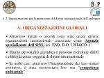 1 2 organizzazioni per la protezione del diritto internazionale dell ambiente1