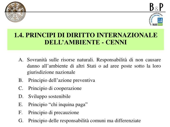 1.4. PRINCIPI DI DIRITTO INTERNAZIONALE  DELL'AMBIENTE - CENNI