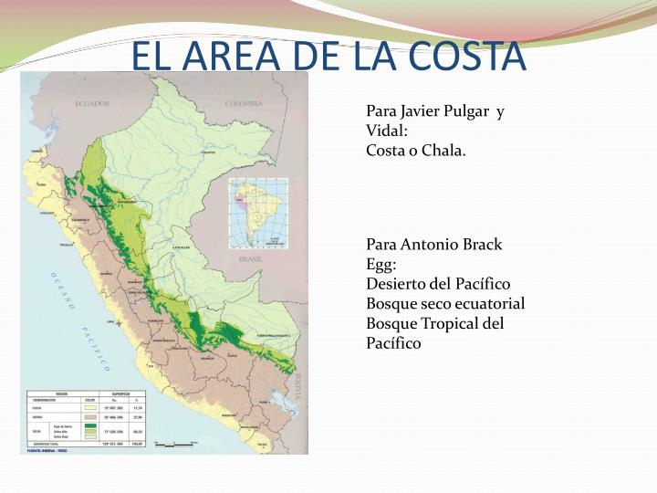 EL AREA DE LA COSTA