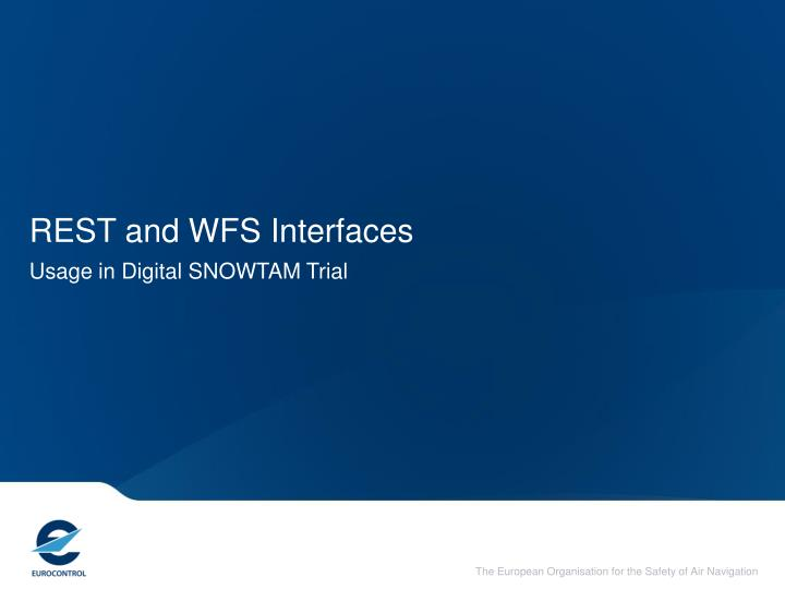 REST and WFS Interfaces