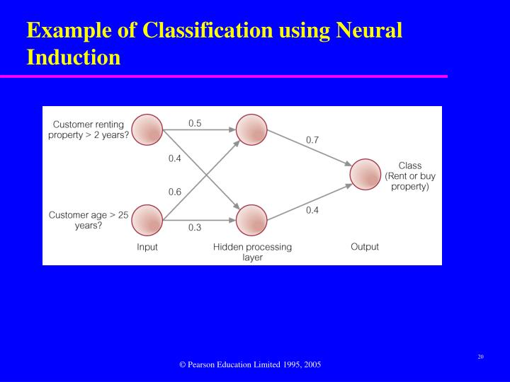 Example of Classification using Neural Induction