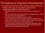 perceptual cognitive development1
