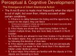 perceptual cognitive development10
