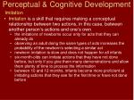 perceptual cognitive development12
