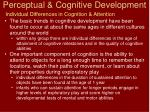 perceptual cognitive development14