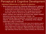 perceptual cognitive development15