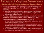 perceptual cognitive development2
