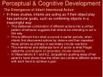 perceptual cognitive development4
