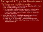 perceptual cognitive development7