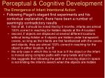 perceptual cognitive development8