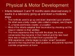 physical motor development2