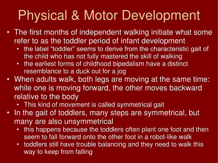 Physical & Motor Development