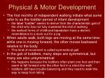 physical motor development4