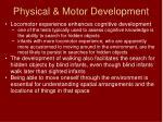 physical motor development6