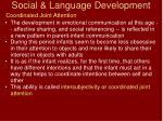 social language development