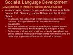 social language development13