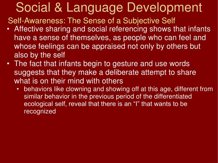 Self-Awareness: The Sense of a Subjective Self