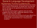 social language development22