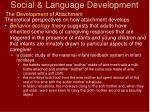 social language development34
