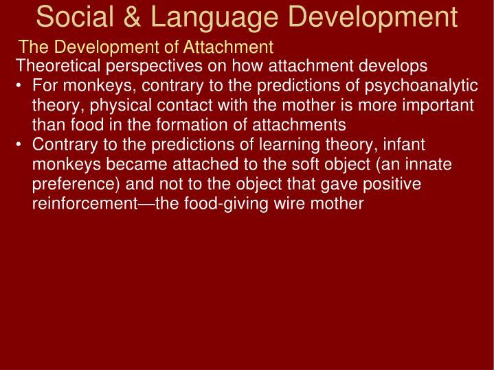 The Development of Attachment